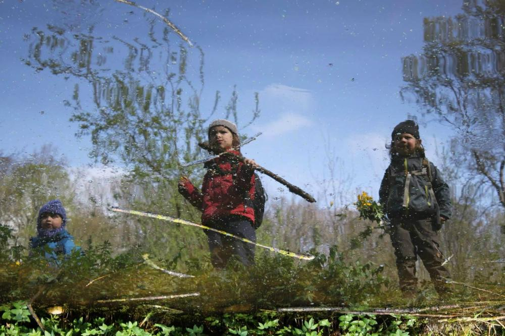 Waldkindergarten Nachteile